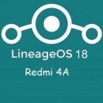 LineageOs 18 Redmi 4A